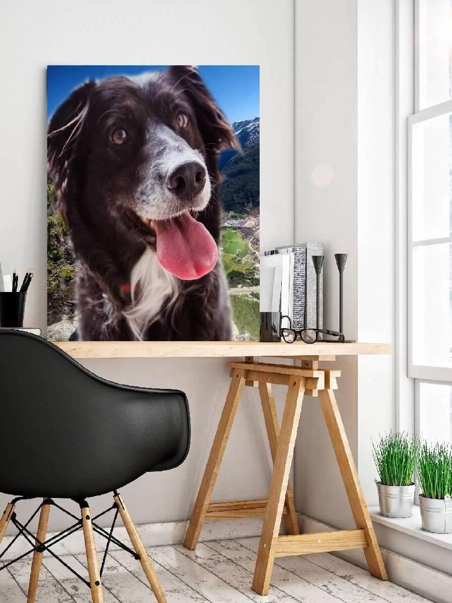 Hund på veggen- Nordic photodesign