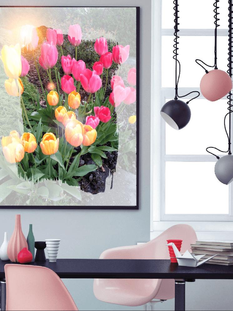 Få laget unike kontorbilder fra Nordic photodesign