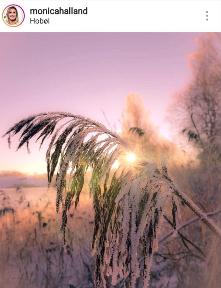 Bli med på Nordic photodesigns 4 fotokonkurranser