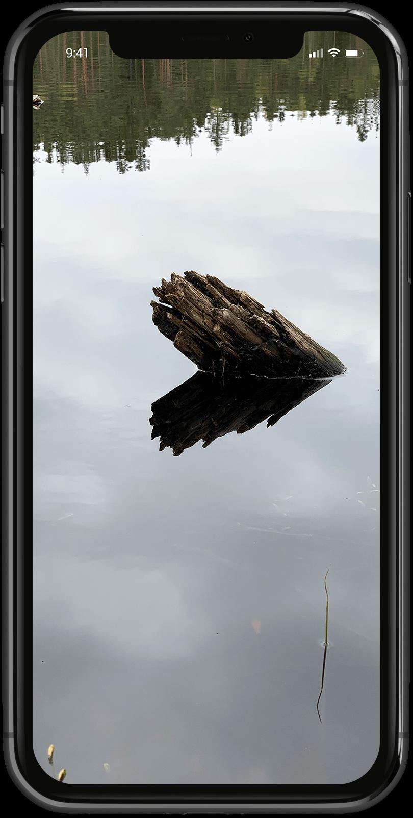 Vinnerbilde i mobilen